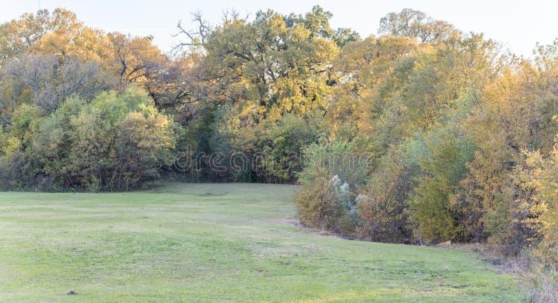 Härlig gräsplan parkerar och färgrik nedgånglövverk nära Dallas, Nort royaltyfri foto