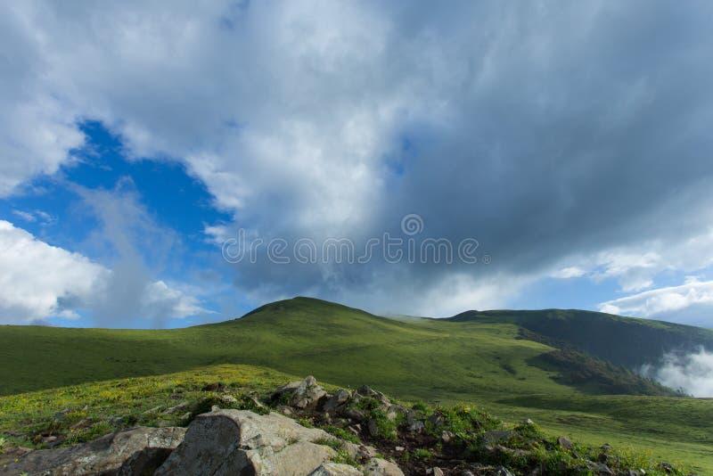 Härlig grässlätt för högt berg arkivbild