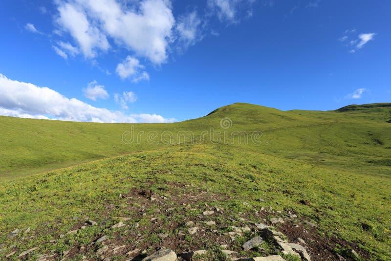 Härlig grässlätt för högt berg i Kina royaltyfri bild