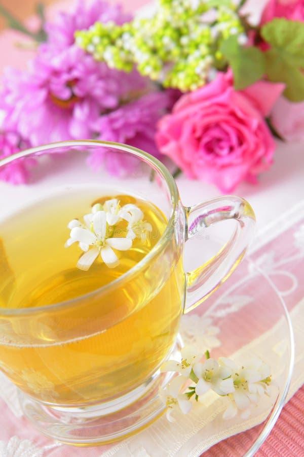 härlig grön tea för eftermiddag arkivbild