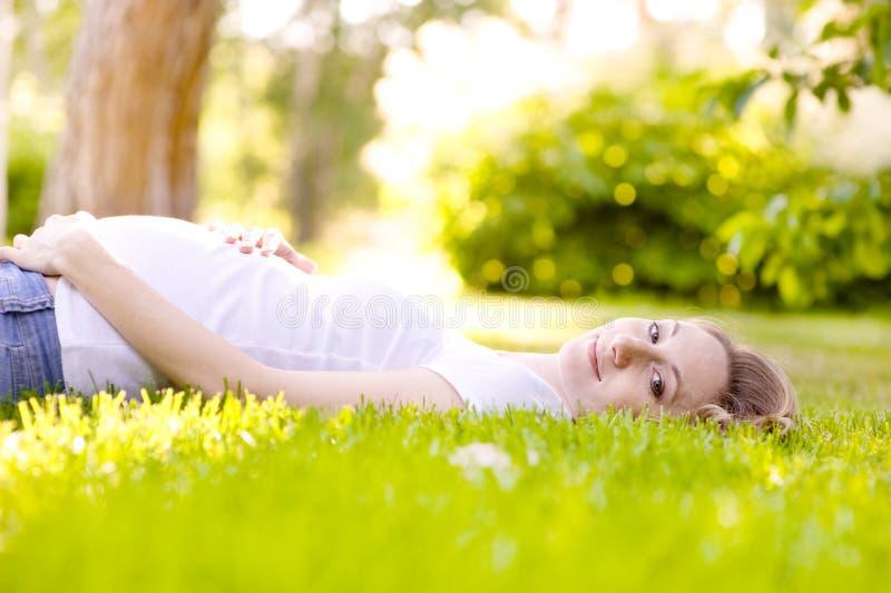 Härlig gravid kvinna som ligger på gräset i solig dag arkivbilder