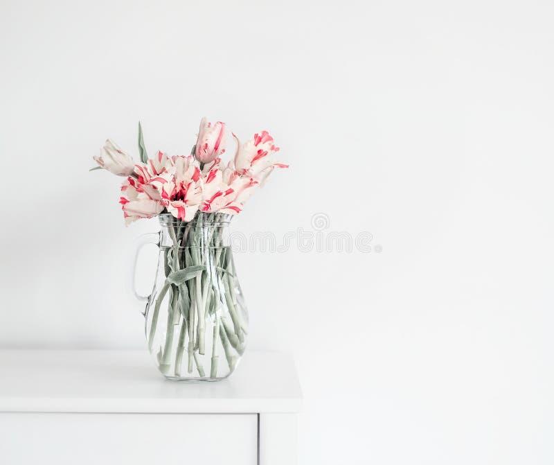 Härlig grupp av tulpan i den glass vasen på den vita tabellen på väggen Blommor i inredesign royaltyfri fotografi