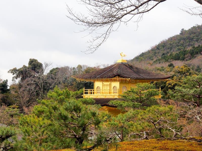 Härlig guld- paviljong på den Kinkakuji templet royaltyfria foton