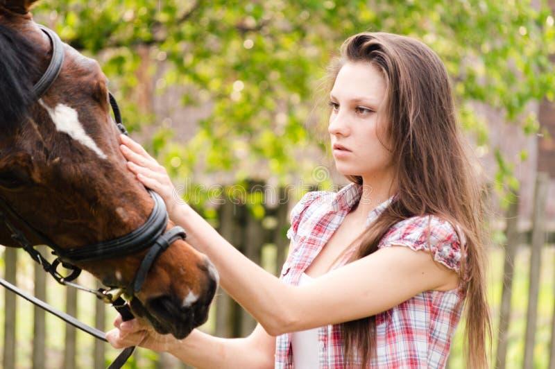 Härlig hållande häst för ung kvinna på sommardag arkivbilder
