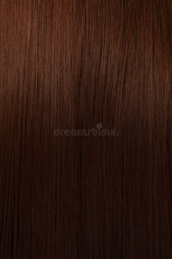 härlig hårshine royaltyfria foton