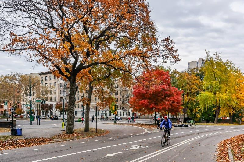 Härlig höstdag för en gå i Central Park New York City Manhattan arkivbilder