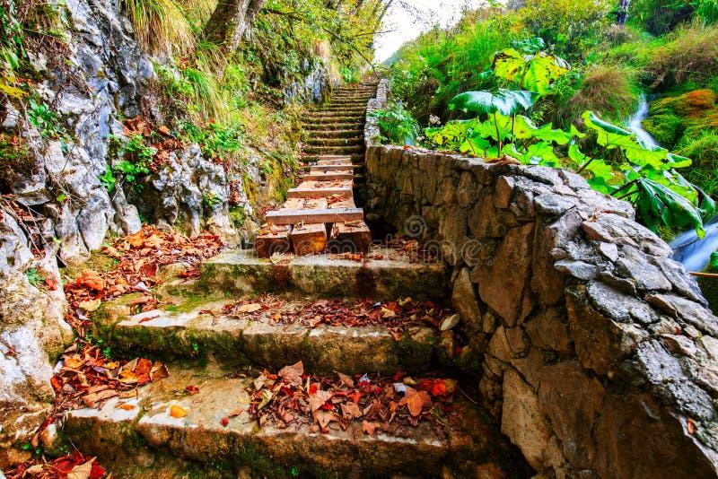 Härlig höstplats i den Plitvice nationalparken royaltyfri foto
