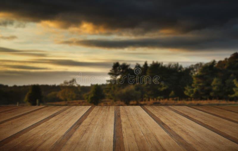 Härlig höstsolnedgång över sjölandskap i skog med woode royaltyfri fotografi