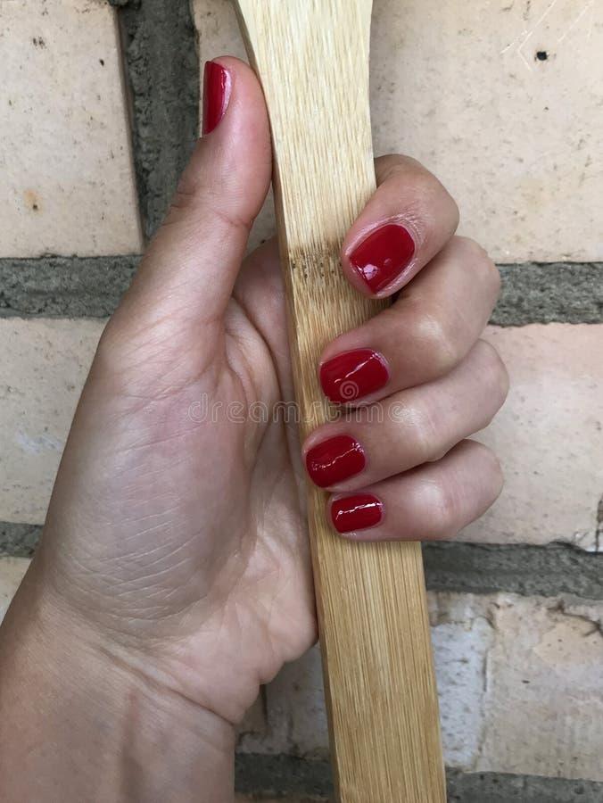 Härlig hand av en ung kvinna med en röd manikyr R?d manicure Hand på bakgrunden av gröna sidor arkivfoto