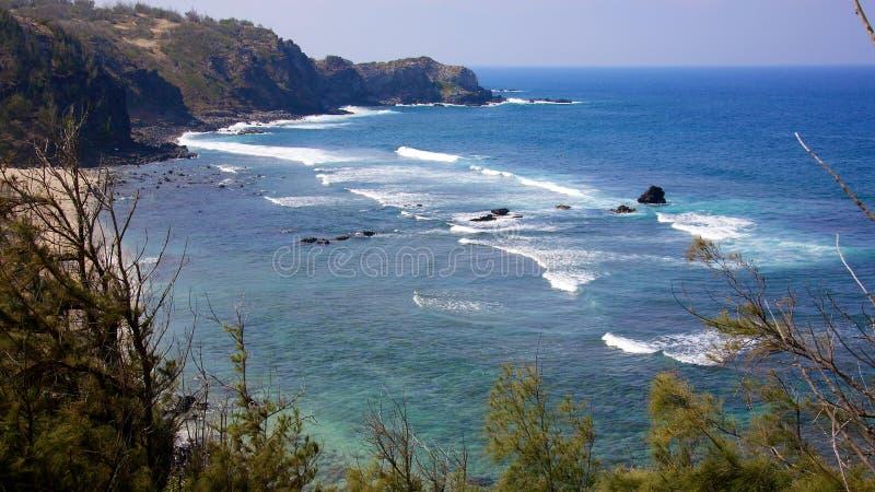 Härlig hawaiansk kust fotografering för bildbyråer