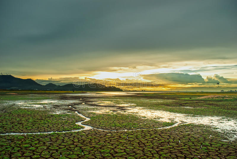 Härlig himmel under solnedgång, sprucken jordning med litet grönt gräs och litet vattenflöde som leder till floden fotografering för bildbyråer