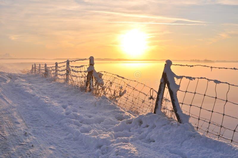 härlig holland vinter arkivbild
