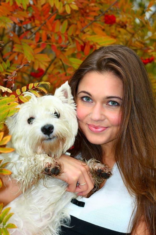 härlig hundflicka henne stående royaltyfria bilder
