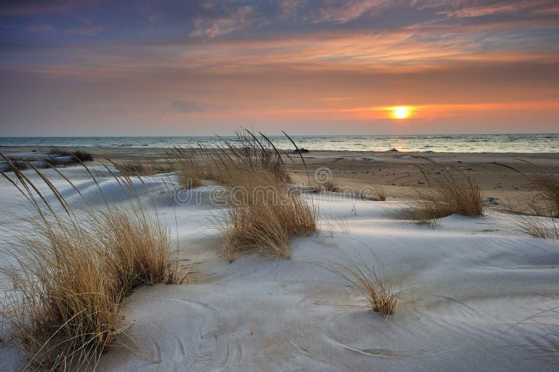 härlig huron lakemichigan soluppgång USA royaltyfri foto