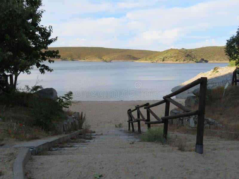 Härlig inre i en sjö av en stor kvalitet av vatten som är passande för att simma royaltyfria bilder