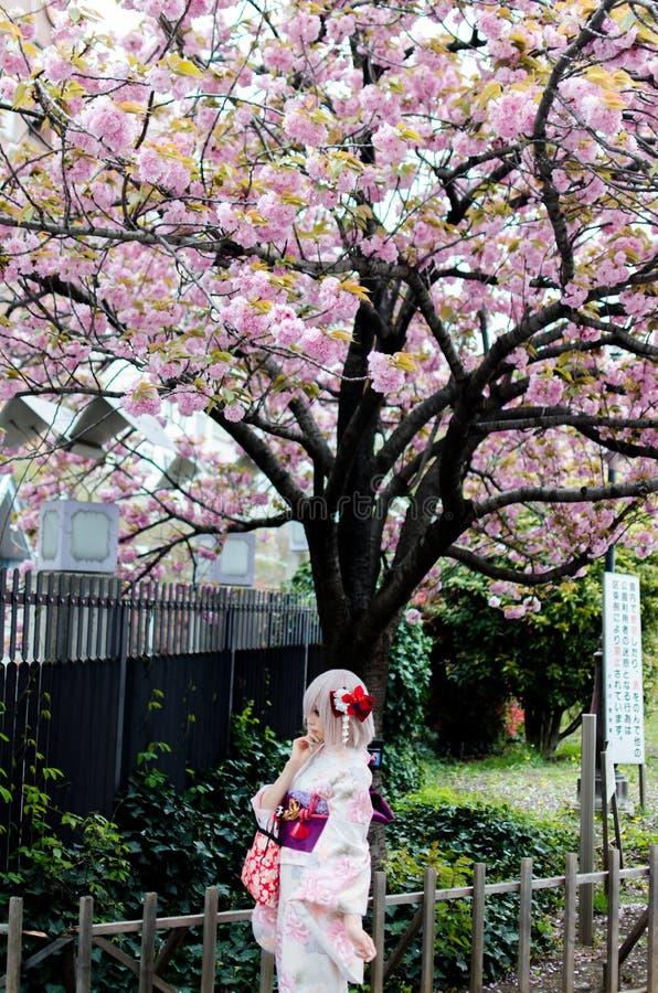 Härlig japansk flicka som bär den färgrika kimonot royaltyfri foto