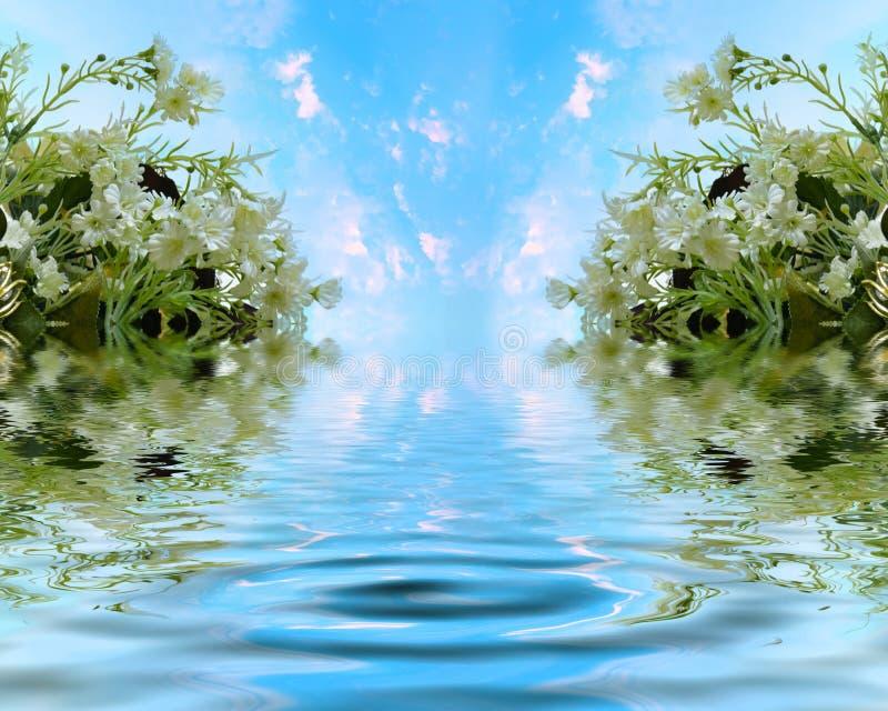 Härlig jasmin med den himla- sjön arkivfoto