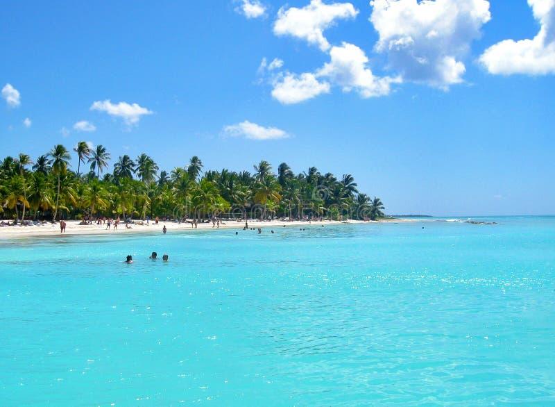 Härlig karibisk strand på den Saona ön som är karibisk, Dominikanska republiken fotografering för bildbyråer