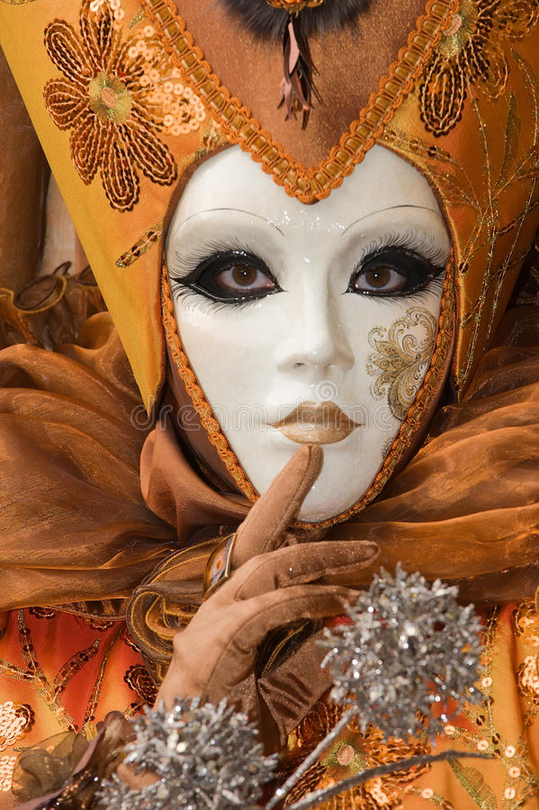 härlig karnevaldräkt fotografering för bildbyråer