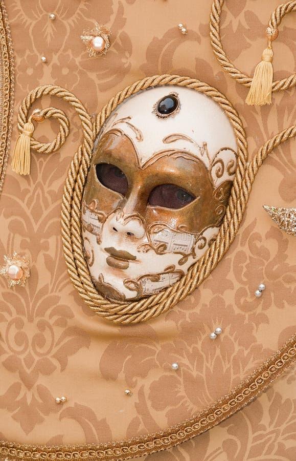 härlig karnevaldräkt arkivfoton
