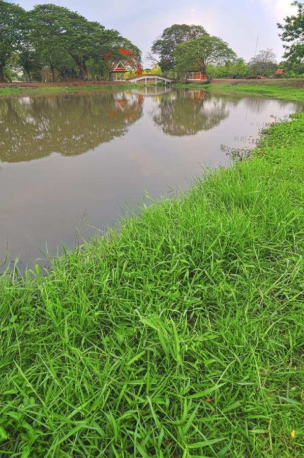 Härlig kinesträdgård med grönt gräs royaltyfri foto