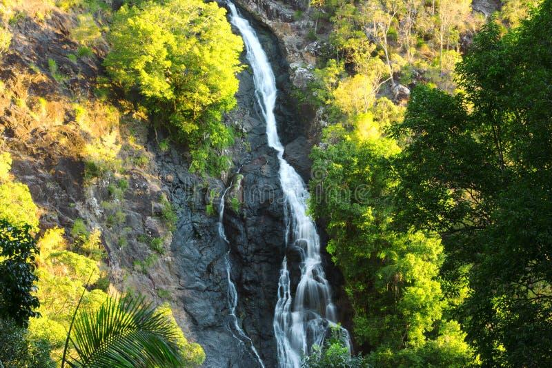 Härlig Kondalilla vattenfall royaltyfri foto