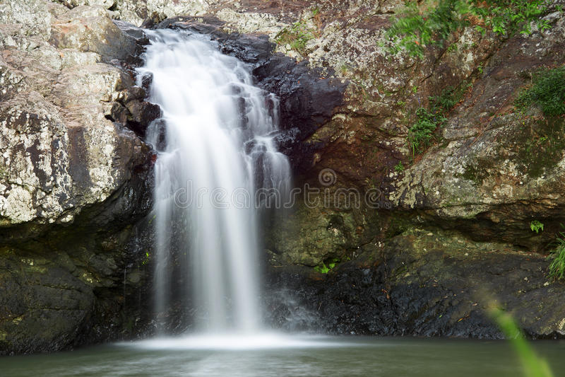 Härlig Kondalilla vattenfall royaltyfria bilder