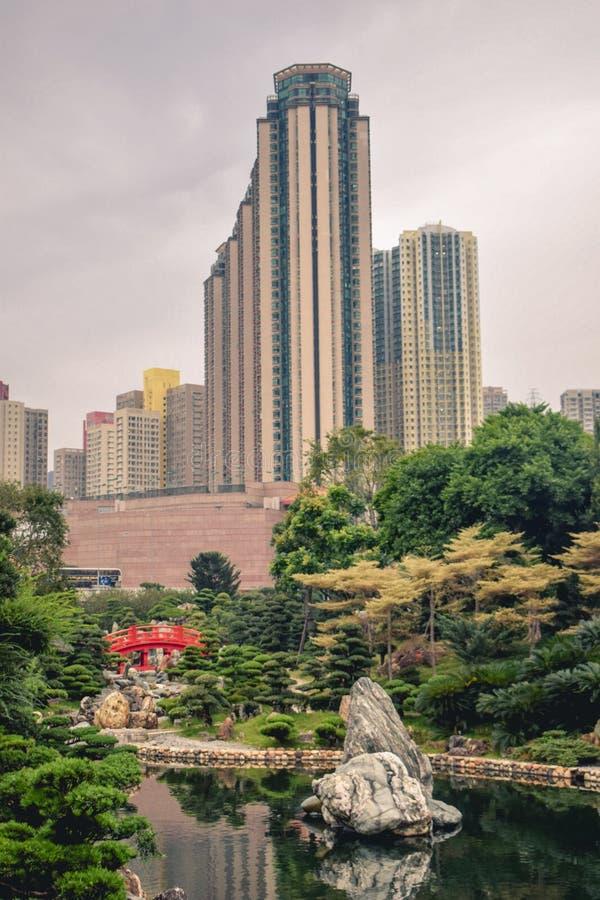 Härlig kontrast mellan de gröna träden och de höga löneförhöjningbyggnaderna för blomma blommorna och i Nan Lian Garden i Hong royaltyfria foton