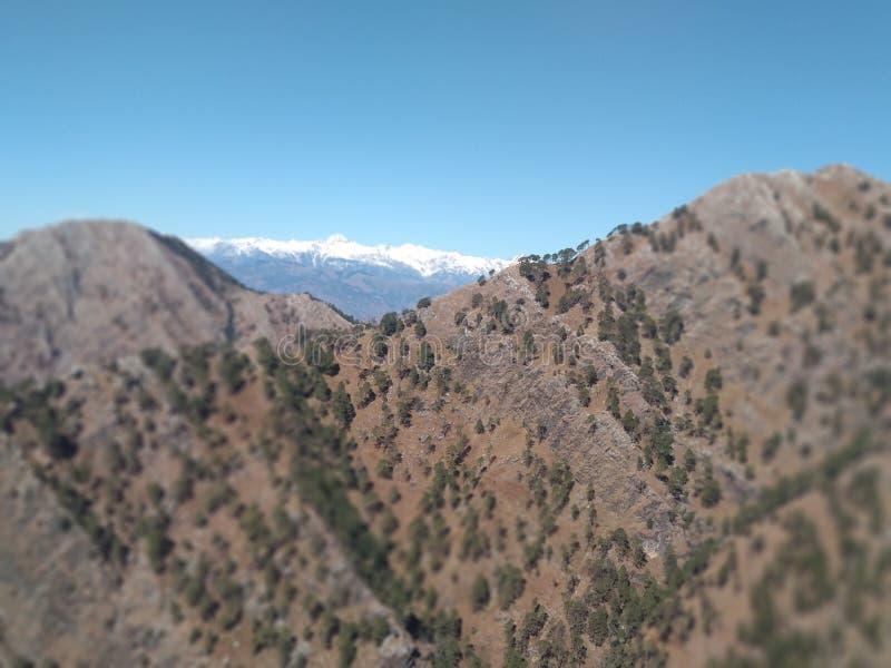 Härlig kullesikt i Kashmir i Indien royaltyfri bild