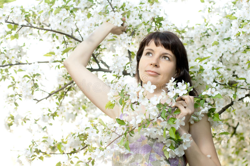 härlig kvinna fotografering för bildbyråer