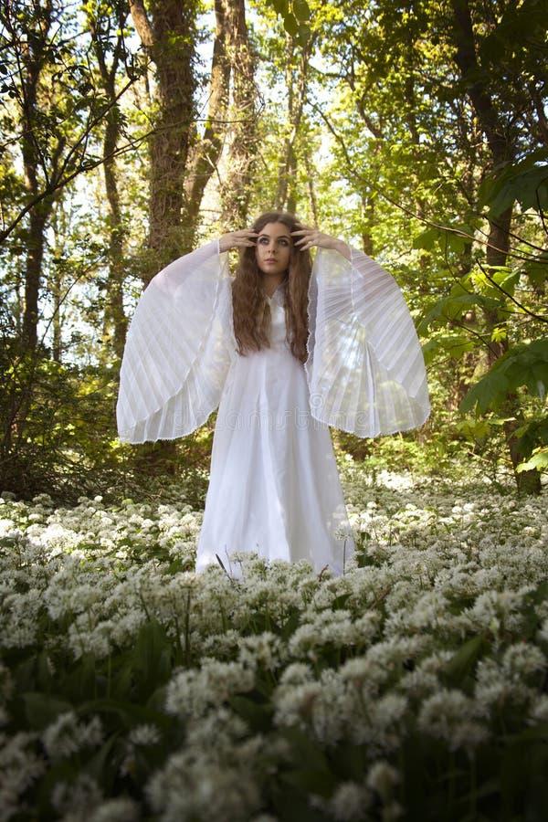 Härlig kvinna i långt vitt klänninganseende i en skog på en ca royaltyfri fotografi