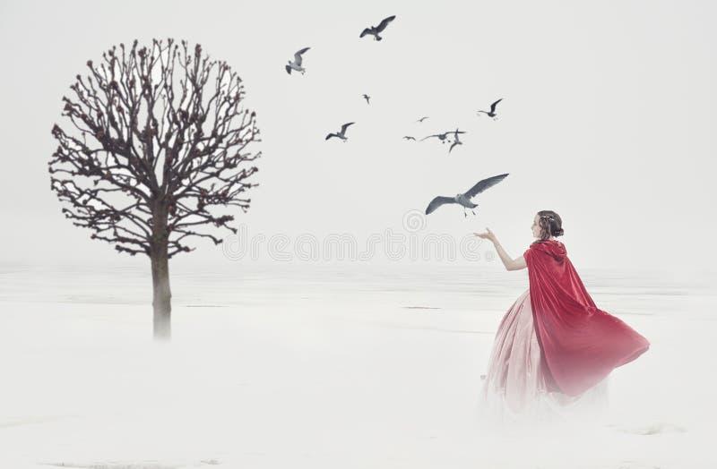 Härlig kvinna i medeltida klänning med fåglar på dimmigt fält royaltyfri bild