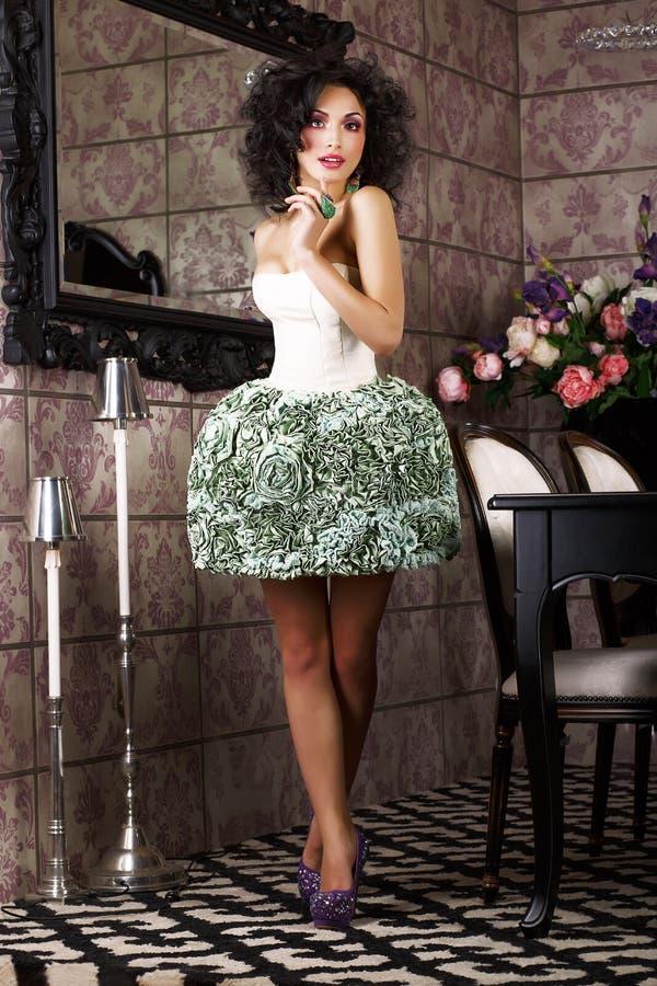 Lyx. Stilfullt brunettanseende i moderiktig klänning. Modern inre arkivbild