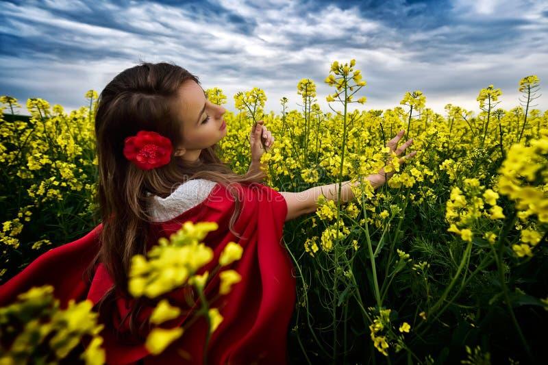 Härlig kvinna med den röda kappan i gult blommande fält fotografering för bildbyråer
