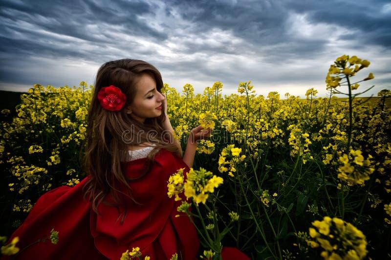Härlig kvinna med den röda kappan i gult blommande fält arkivbilder