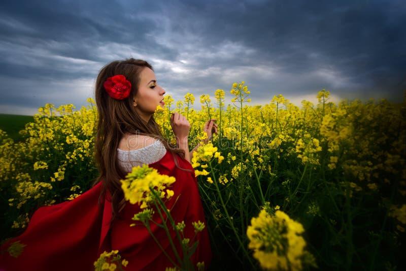Härlig kvinna med den röda kappan på blommande rapsfröfält royaltyfria bilder