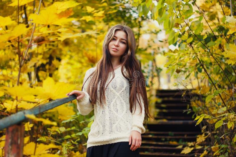 Härlig kvinna med långt hår på gul bakgrund för höstsidor arkivbilder