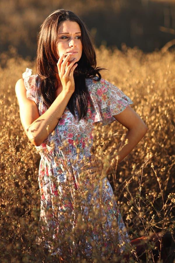 Härlig kvinna på ett fält i sommartid royaltyfri fotografi