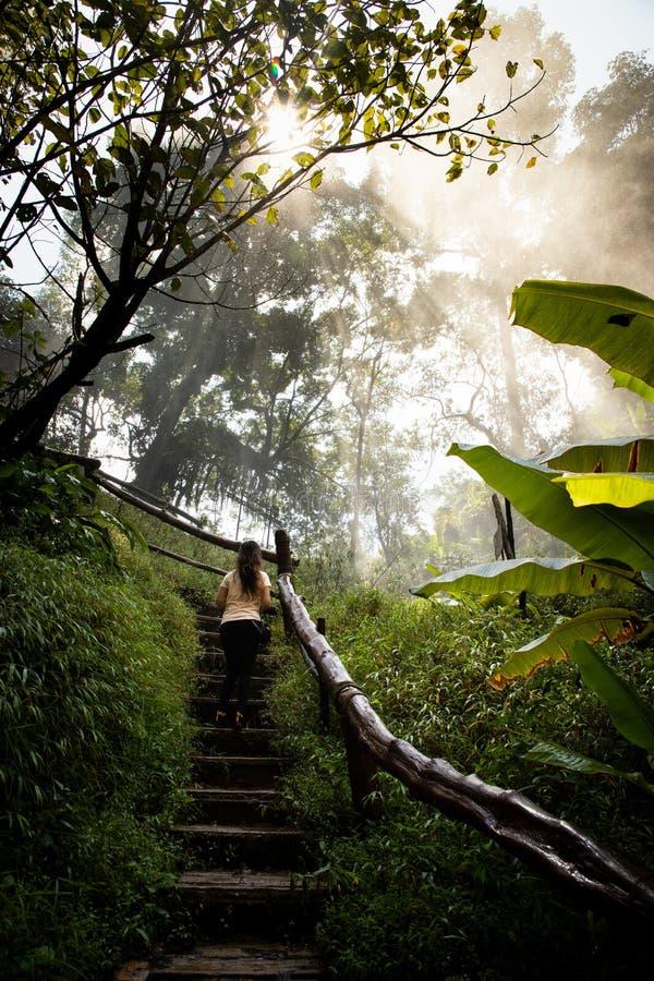 Härlig kvinna på trappa på en dimmig och våt rainforestbana i Chiang Mai & x28; Thailand arkivfoto