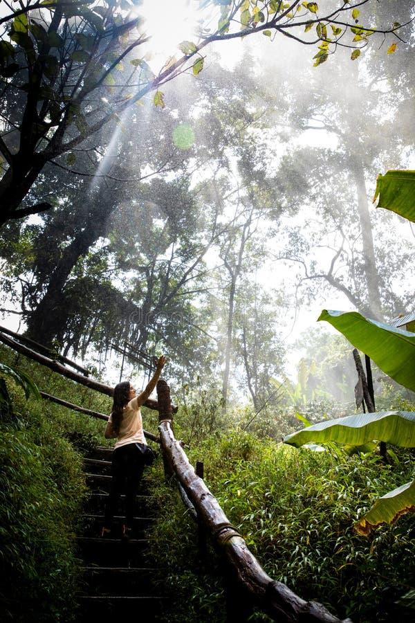 Härlig kvinna på trappa på en dimmig och våt rainforestbana i Chiang Mai & x28; Thailand royaltyfri foto