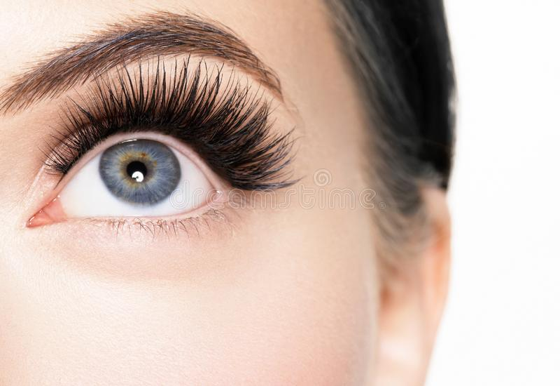 Härlig kvinnaframsida med makeup för sund hud för ögonfransskönhet naturlig royaltyfri foto