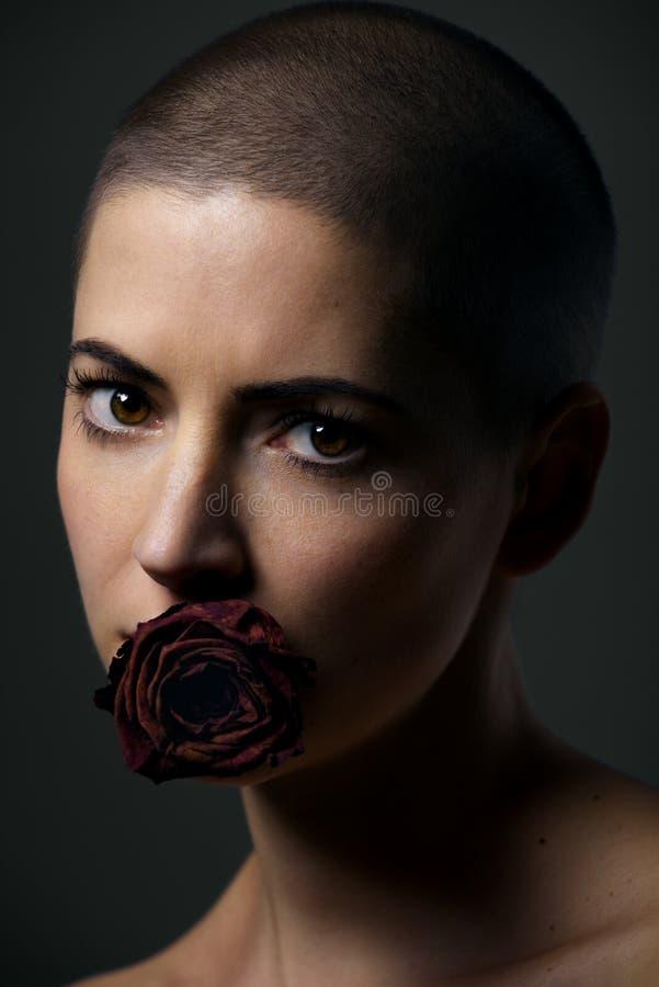 Härlig kvinnlig cancerpatient med det rakade huvudet och rosen i hennes mun Cancertabu, jämställdhet och diskriminering royaltyfri bild
