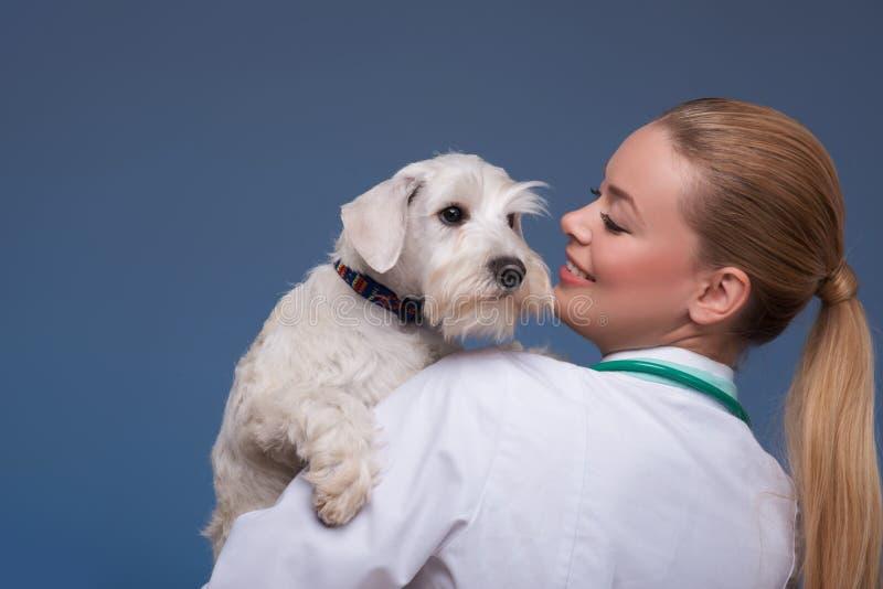 Härlig kvinnlig veterinär som rymmer den gulliga hunden royaltyfri foto