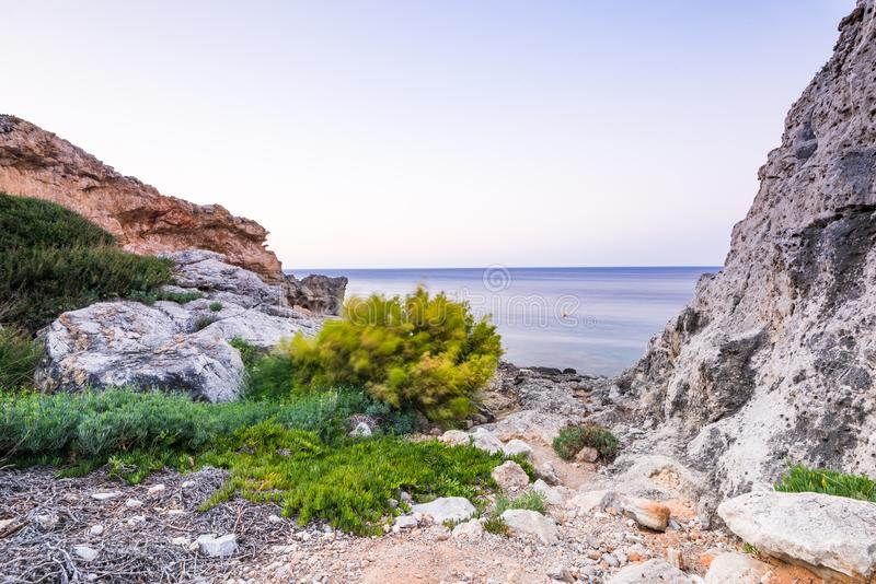 Härlig lös strand med flora i Kalithea, Rhodes, Grekland arkivfoton