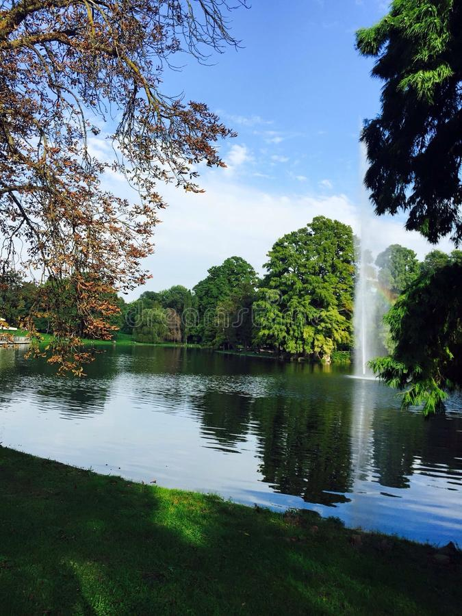 härlig lakeside royaltyfria foton