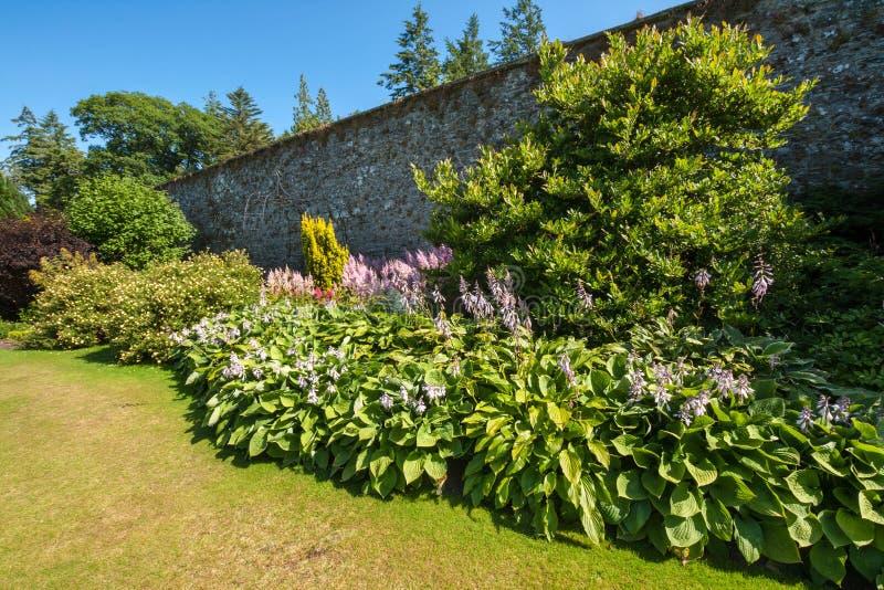 Härlig landskap sommarträdgård arkivbild