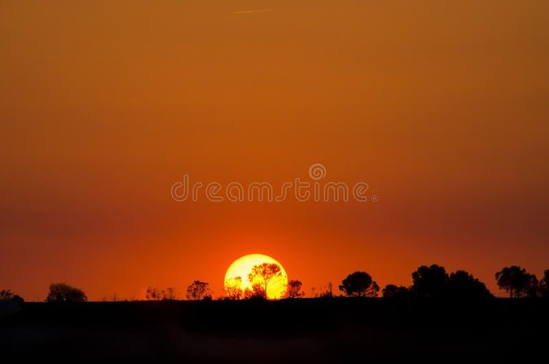 Härlig landskapbild med trädkonturn på solnedgången, Spanien royaltyfri foto