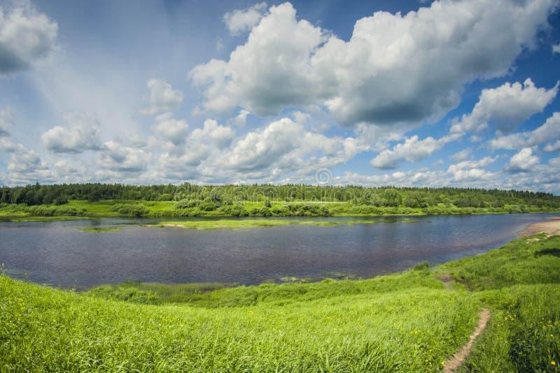 Härlig landskapfloddelta med ängar och skogen på en solig dag arkivbild