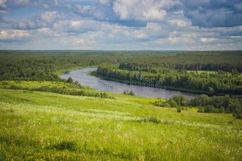 Härlig landskapfloddelta med ängar och skogen på en solig dag arkivbilder