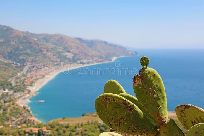 Härlig landskappanorama av den Sicilien kustlinjen med fokusen på kaktuns Blå medelhav och gröna mountians i Taormina royaltyfria foton